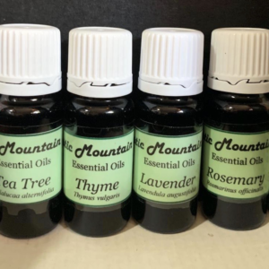 Eucalyptus Essential Oil 10ml – Mystic Mountain